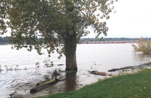 The shoreline is just barely flooded, with the lock and dam in the background.