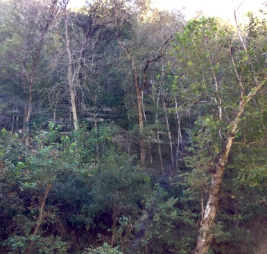 These are the walls surrounding the green river: several hundred feet of sandstone and limestone outcroppings.