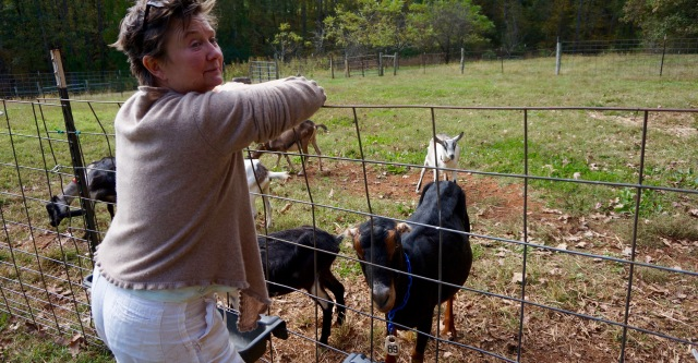 Gail is a former restaurant chef who makes outstanding bloomy rinded cheeses in rural VA